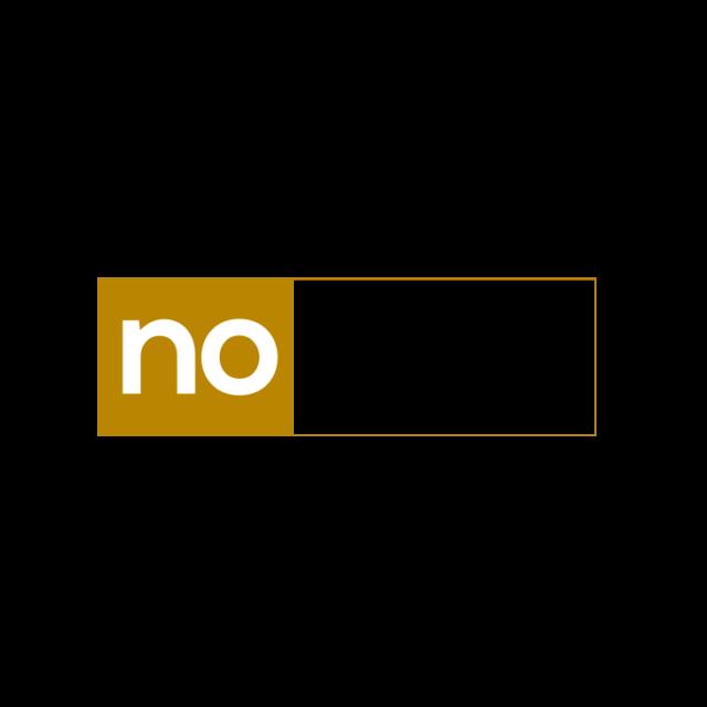 noanyi logo